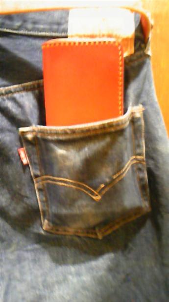 ポケットロング_convert_20091015113710