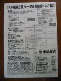 daikyushu_cat7.jpg