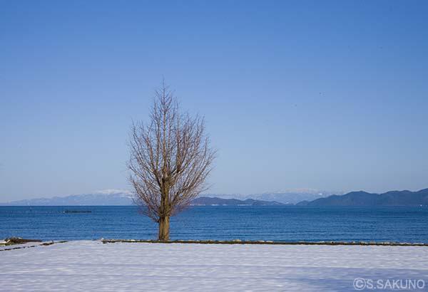雪晴1024W0051