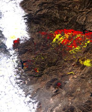 カリフォルニア州火災の影響