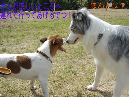 原っぱデート1