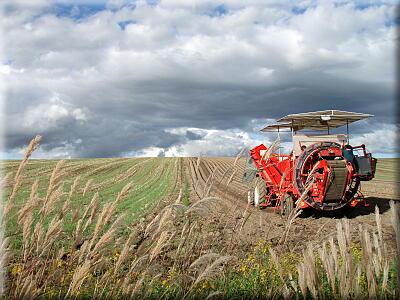 P909収穫のトラクター