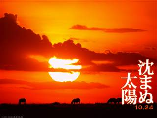 taiyo_wp01_normal_R.jpg