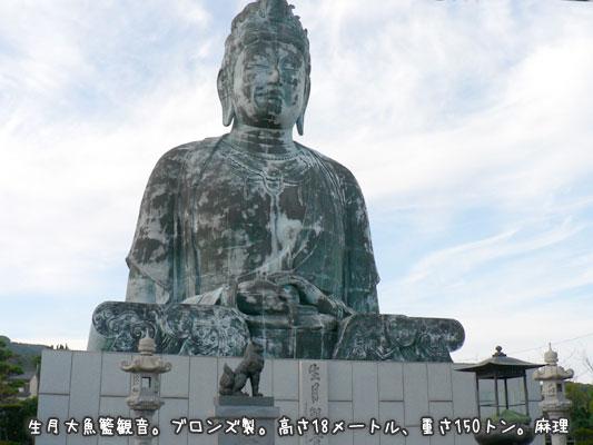 2008-01-13-01.jpg