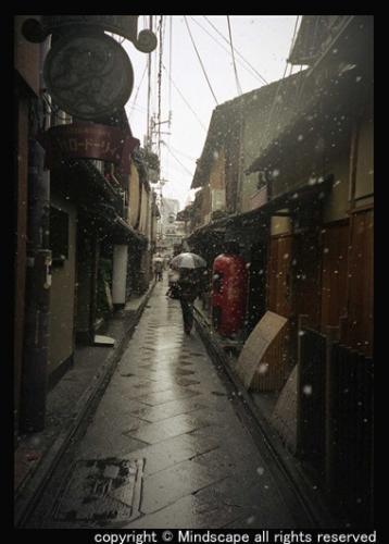 先斗町の雪