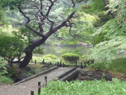 古河庭園②