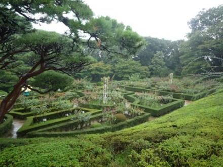 古河庭園④