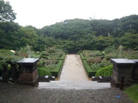 古河庭園⑥