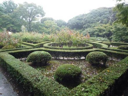 古河庭園⑦