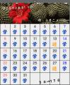 ばじるカレンダー