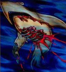 rdr-shark.jpg