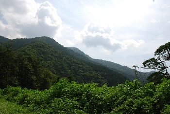 山へ向かう。