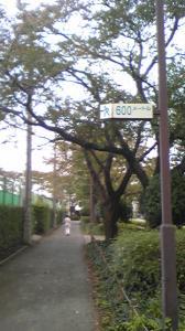 20091015163120