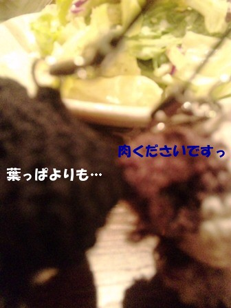 101211_194150.jpg