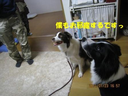IMG_9624_2.jpg