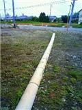 20110527-8.jpg