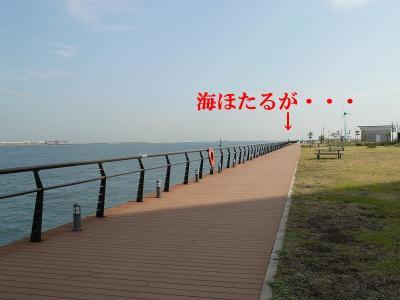 s-P1040113.jpg