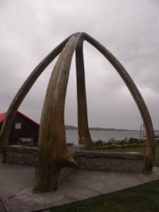 フォークランド/鯨の骨のアーチ