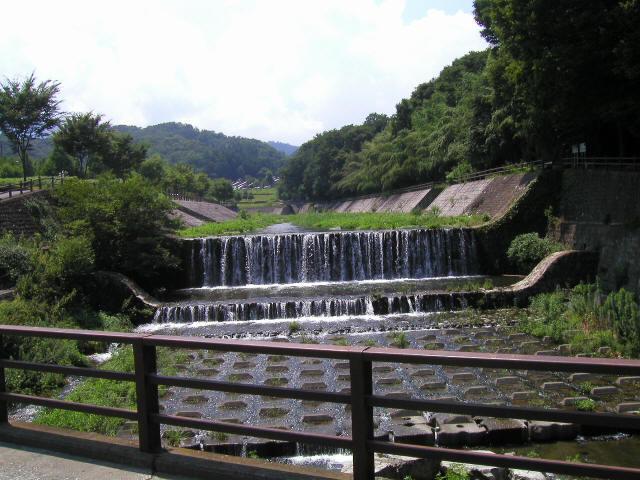 甘楽総合公園の吊橋6