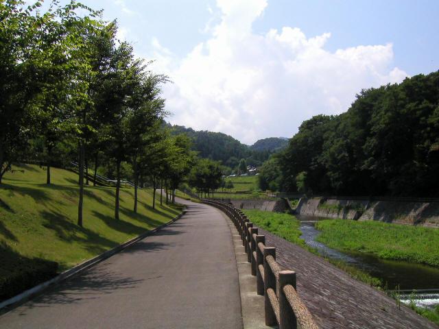 甘楽総合公園の吊橋5