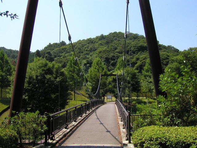 甘楽総合公園の吊橋3