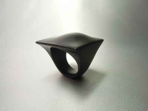 20120104_black hill