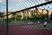 テニスコートは6面くらいあります?