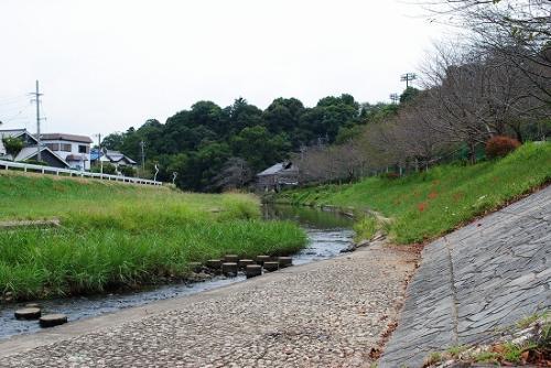 近所の川1