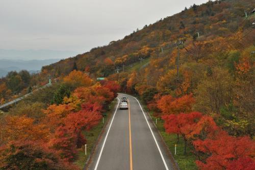 茶臼山高原9