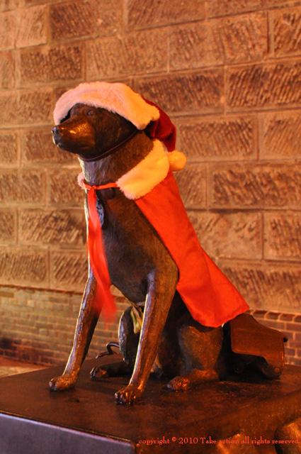 2010年消防犬サンタ