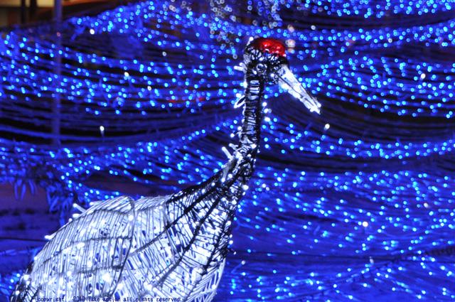ホワイトイルミネーション鶴