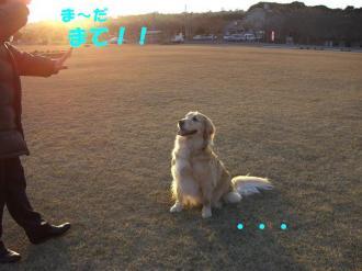 夕日の散歩 058