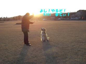夕日の散歩 059