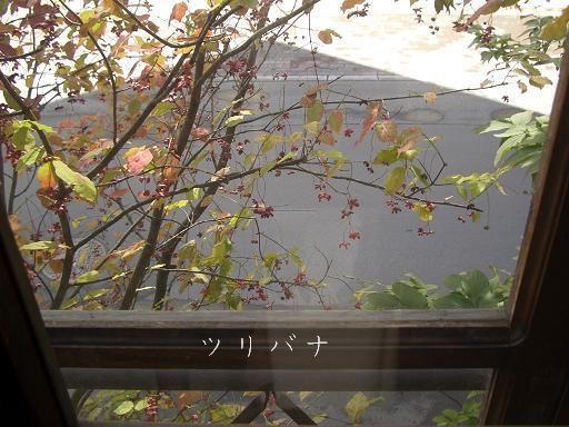 r1_20091011152752.jpg