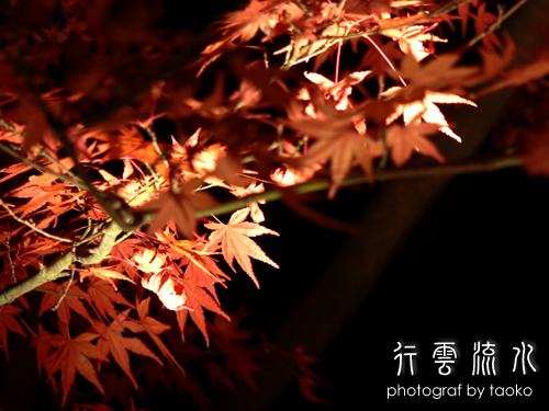 photo33.jpg