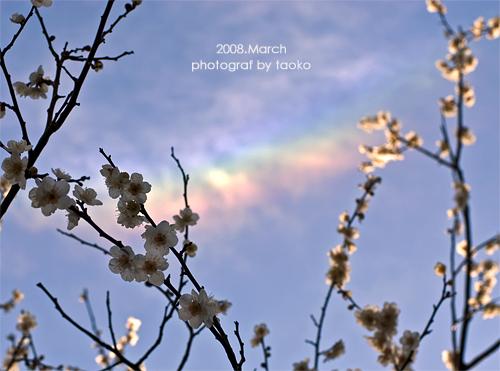 photo91.jpg