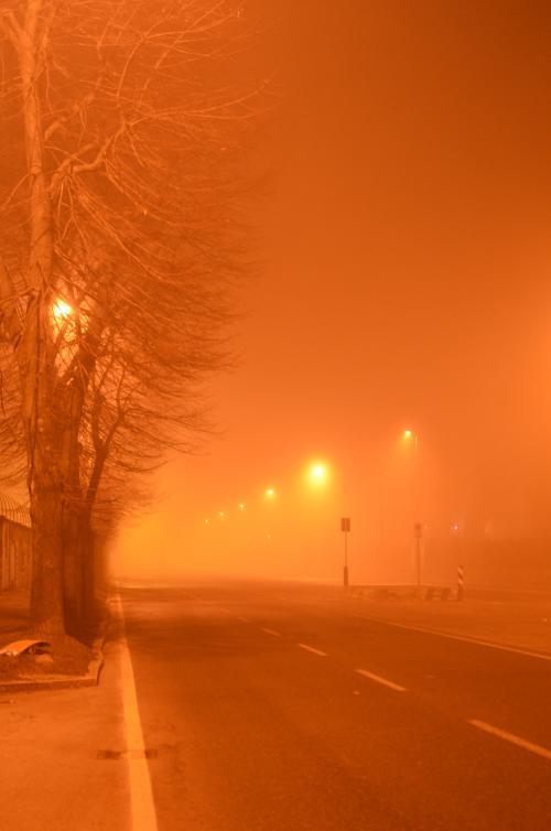 DSC 1279 convert 20110205042959 - ミラノの霧と須賀敦子