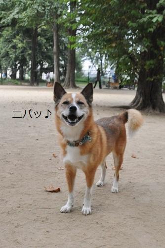 所沢航空公園 057