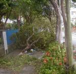 taifuu4-1.jpg