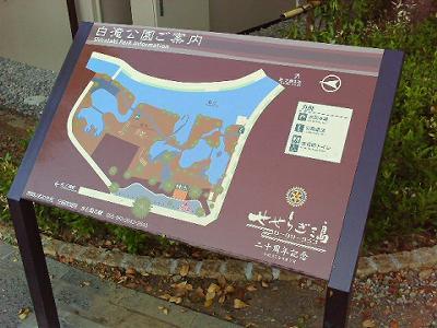 shirataki2.jpg