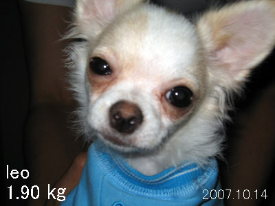 2007.10.16③