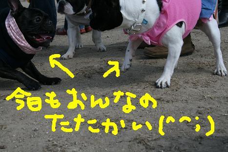 2008022423.jpg