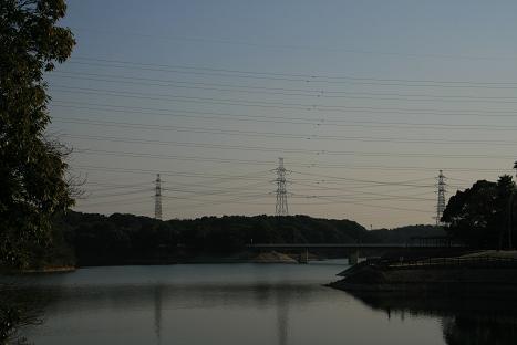2008022928.jpg