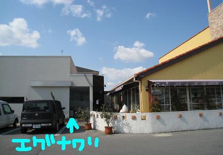 2008030605.jpg