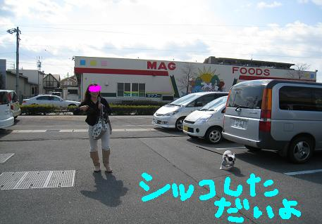 2008030608.jpg