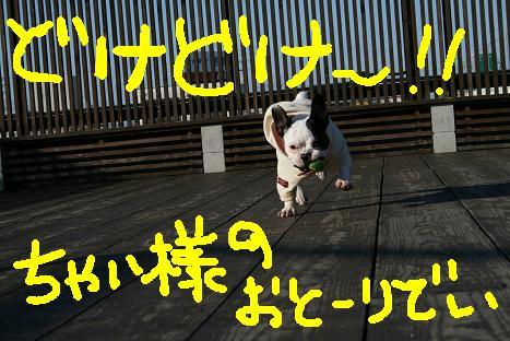 IMG_9756.jpg