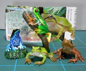 20091014_kaeru01.jpg
