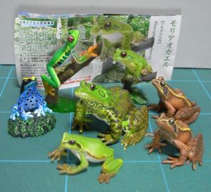 20091018_kaeru01.jpg