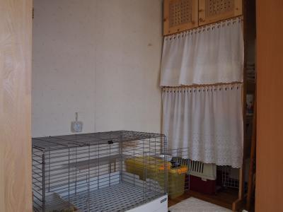 20111010-1.jpg