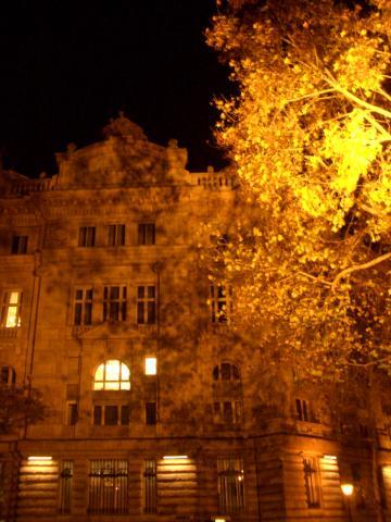夜のペスト